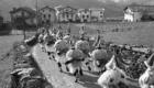 Carnavales Ituren 1981