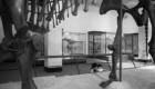 Museo Ciencias Naturales de Nueva York 1980